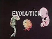 Evolution Free Cartoon Picture