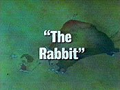 The Rabbit Picture Of Cartoon