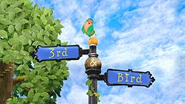 3rd & Bird Episode Guide Logo