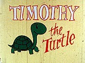 Timothy The Turtle Cartoon Picture