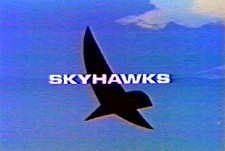Sky Hawks Episode Guide Logo