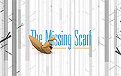The Missing Scarf Pictures To Cartoon