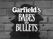 Garfield's Babes And Bullets Cartoon Picture