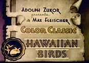Hawaiian Birds Video