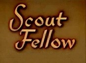 Scout Fellow