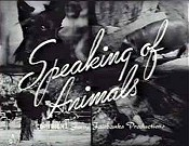 Calling All Animals Cartoons Picture