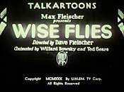 Wise Flies Picture Into Cartoon