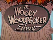 The Woody Woodpecker Show (Series) Picture Into Cartoon