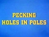 Pecking Holes In Poles Cartoon Picture