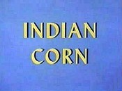 Indian Corn Cartoon Character Picture