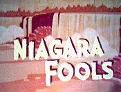 Niagara Fools Cartoon Picture