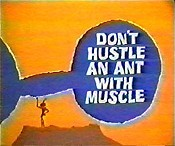 Don't Hustle An Ant With Muscle Cartoon Picture