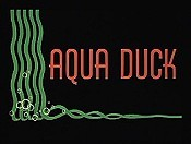 Aqua Duck Picture Of Cartoon