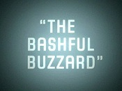 The Bashful Buzzard Video