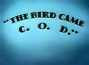 The Bird Came C.O.D. Cartoon Picture