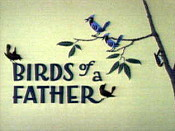 Birds Of A Father Cartoon Picture