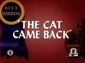 The Cat Came Back Cartoon Picture