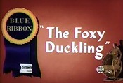 The Foxy Duckling Picture Of Cartoon