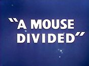 A Mouse Divided Cartoon Picture