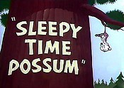 Sleepy Time Possum Cartoon Picture