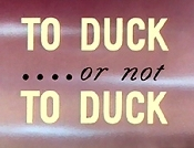To Duck ....Or Not To Duck Cartoon Picture