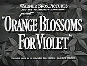 Orange Blossoms For Violet Cartoon Picture