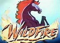 Wildfire: King Of The Horses Cartoon Character Picture