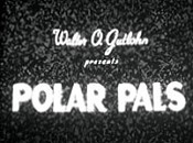 Polar Pals Picture Of Cartoon