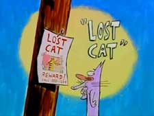 Lost Cat Picture To Cartoon