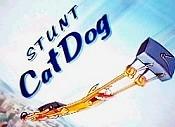 Cat Diggety Dog Hicksville