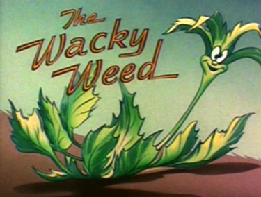 The Wacky Weed Picture To Cartoon