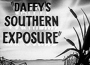Daffy's Southern Exposure Cartoon Picture
